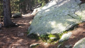 Barr Trail to Pikes Peak