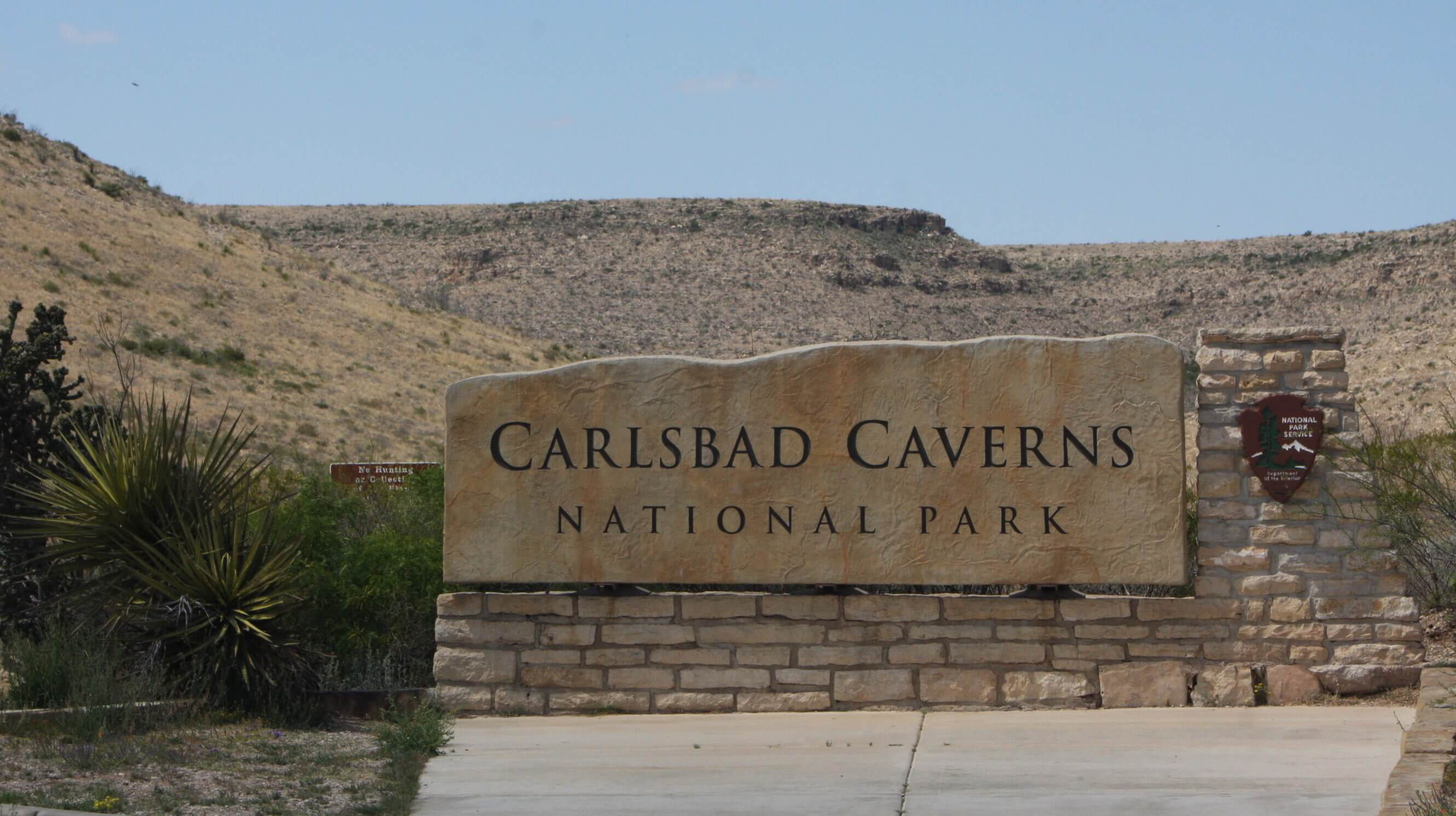 The Treasures You'll Find at Carlsbad Caverns